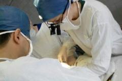 Фото 2. Операции при помощи микрохирургии